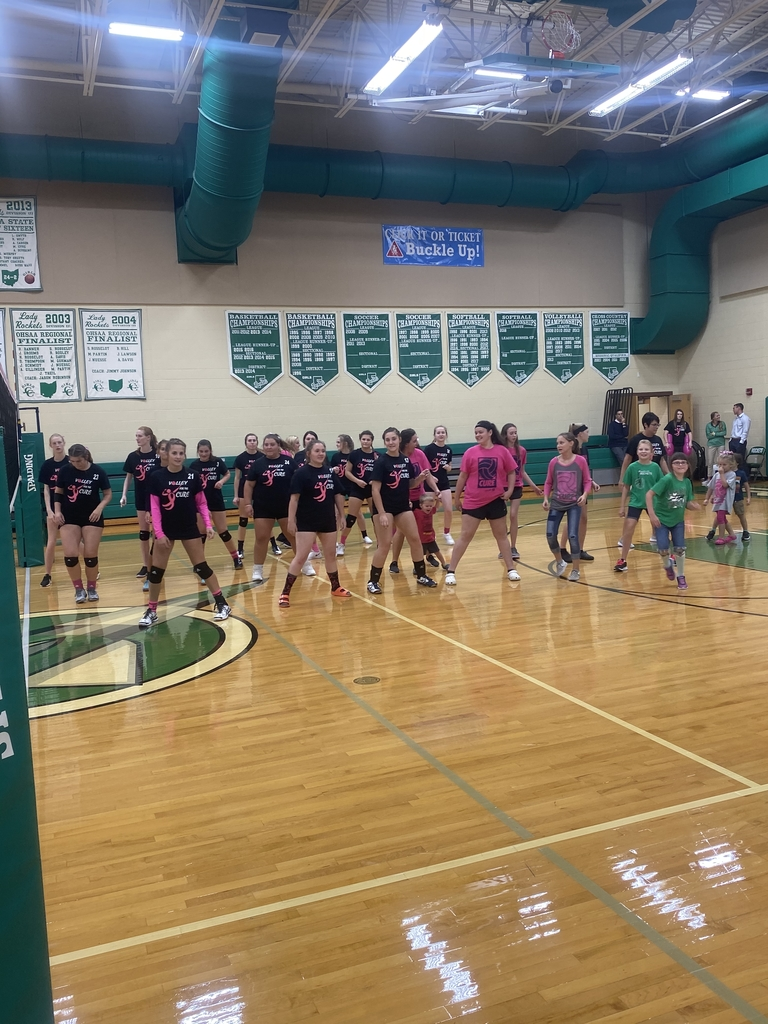 Cupid Shuffle at Volley for a Cure.